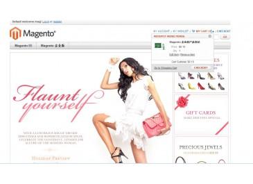 Magento 多语言商城购物系统 演示 | DEMO